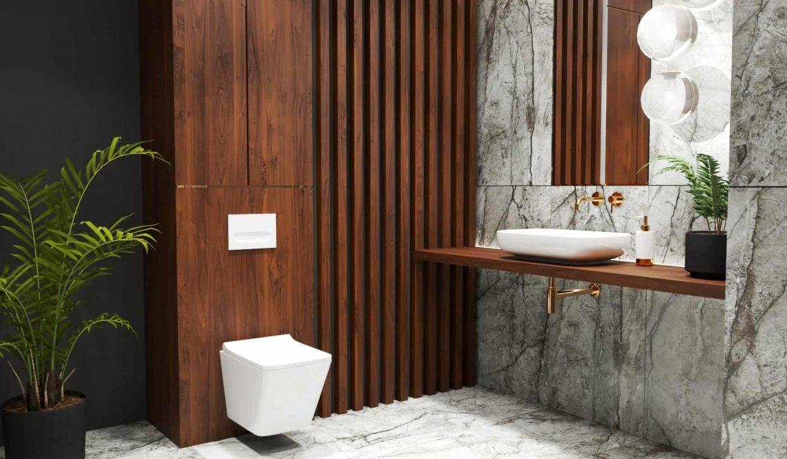 Marble bathroom design toilet vanity view